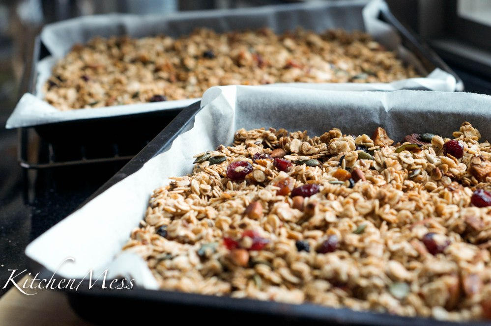 Granola with Honey and Seasalt (6 of 29)